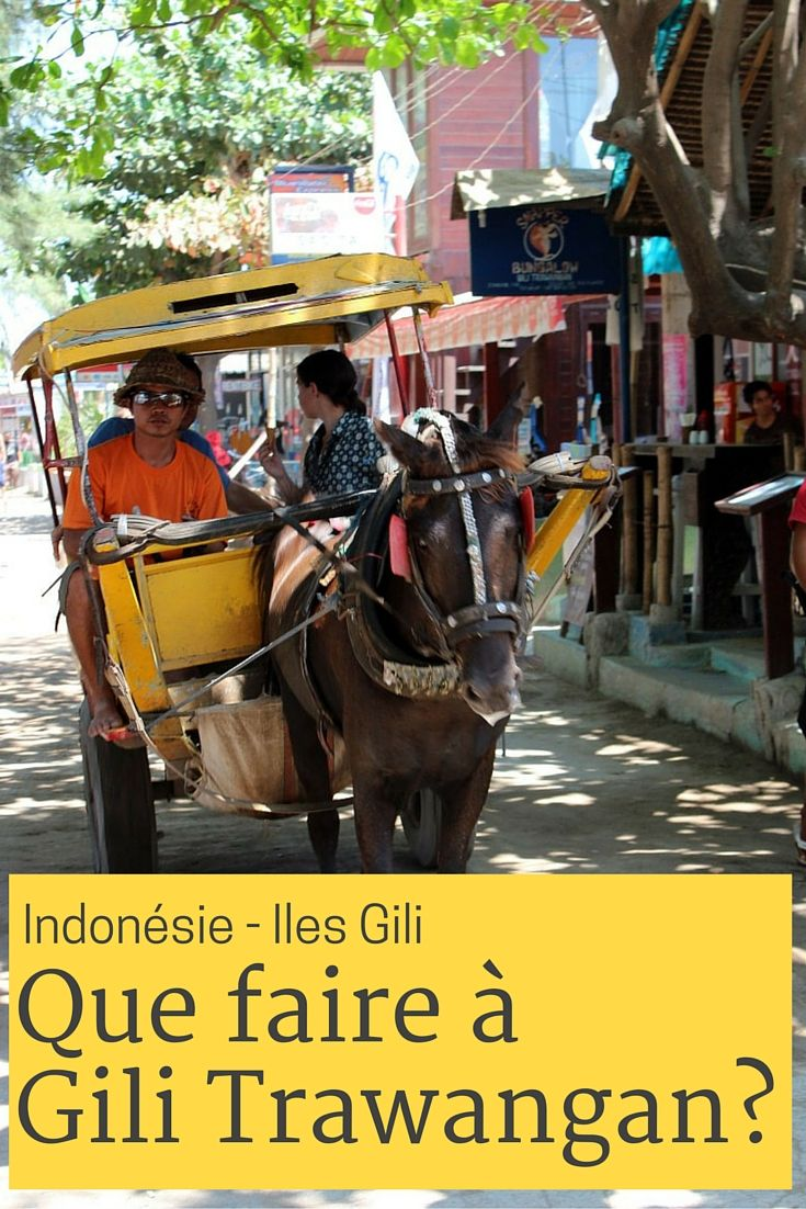 Gili Trawangan petite ile entre Bali et Lombok