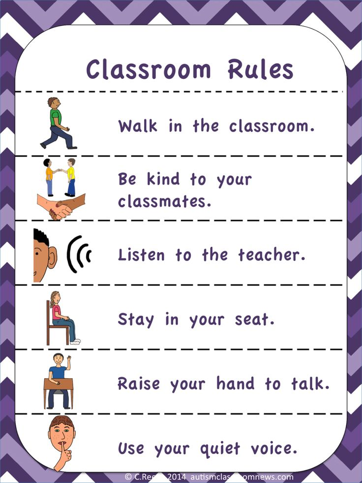 Visual Rules and Expectations (FREEBIE!) - Autism Classroom Resources