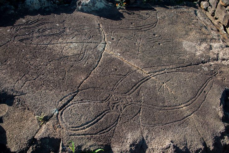Rare ancient Easter Island carving. Huge octopus (3 m) and holes looking like stars. What constellation could it be?