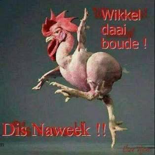 Wikkel-Wikkel