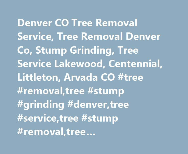 Denver CO Tree Removal Service, Tree Removal Denver Co, Stump Grinding, Tree Service Lakewood, Centennial, Littleton, Arvada CO #tree #removal,tree #stump #grinding #denver,tree #service,tree #stump #removal,tree #company,tree #trimming,tree #pruning # http://lesotho.remmont.com/denver-co-tree-removal-service-tree-removal-denver-co-stump-grinding-tree-service-lakewood-centennial-littleton-arvada-co-tree-removaltree-stump-grinding-denvertree-servicetree-stump/  # Denver Tree Service Company…