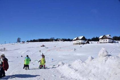 Zima - Šumava