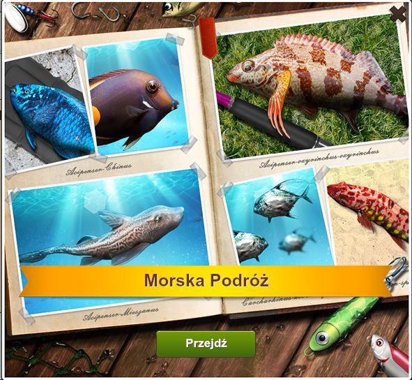 Morska Podróż http://naryby2.fansite.xaa.pl/watek-1329.html #naryby #letsfish