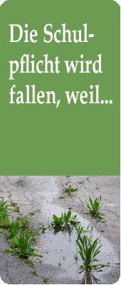 Mitmachaktion: Solidarität für Bildungsfreiheit  Im November 2010 wurden Christiane Ludwig-Wolf und Andreas Jannek vom Amtsgericht Münsingen zu einem Bußgeld von 200,- € jeweils pro Elternteil verurteilt, weil ihre Kinder frei lernen und damit der Schulpflicht nicht nachkommen. Inzwischen ist dieses Urteil rechtskräftig und zwischen den Jahren verschickte die Staatsanwaltschaft Mahnungen von insgesamt 706,00 € (400,00 € Strafe + 306,00 € Kosten).  Noch 45 Unterstützer werden aktuell gesucht!