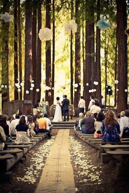 Amazing Sydney wedding venue