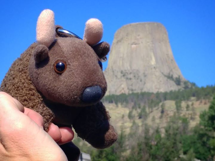 "#buddybison had a great time at #devilstower #nationalmonument today. He said ""it rocked!""  #wheresbuddybisonbeen #FindYourPark #NationalParks #everykidinapark #kidsinparks #nationalparkfamily #naturetechfam #familytravel #outfam #outdoorfamilies #wyoming"