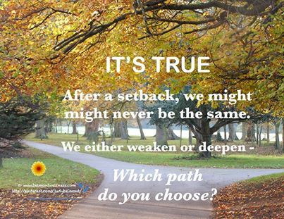 Which Path do you Choose?