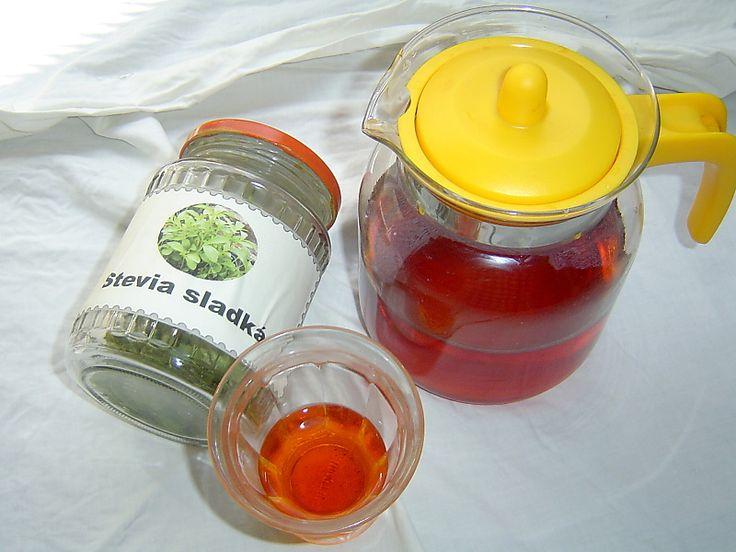 Stévie sladká je rostlina, o níž se možná více hovoří a píše, než že by se v českých podmínkách užívala. O pěstování ve velkém