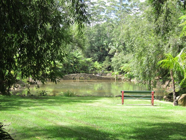 Tamborine Mt Botanic Gardens Plants for sale Wed & Thu 9.00 - 12.00 -      $3 - $5