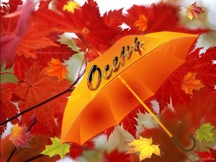 Открытка что такое осень