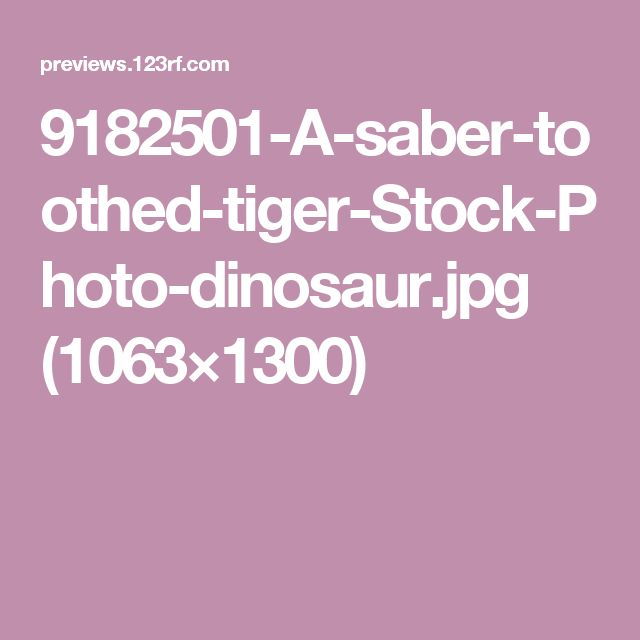 9182501-A-saber-toothed-tiger-Stock-Photo-dinosaur.jpg (1063×1300)