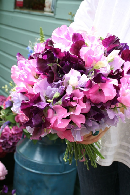 sweet pea bouquet (too pink)