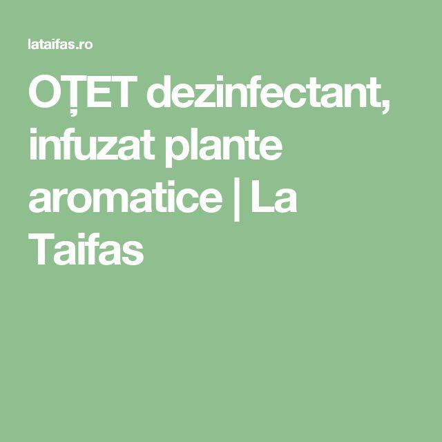 OȚET dezinfectant, infuzat plante aromatice | La Taifas
