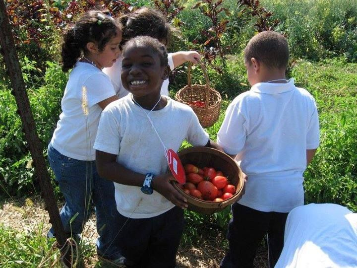 October is National Farm To School Month!  It's time to raise awareness about the importance of childhood nutrition. Through individual efforts and business-community partnerships, we can not only educate our youth about their diet, but we can support our local economies and begin reshaping our food systems too.   Follow the National Farm to School Network Facebook page for resources, activities, and outreach opportunities to help your community make more informed food choices. #F2SMonth