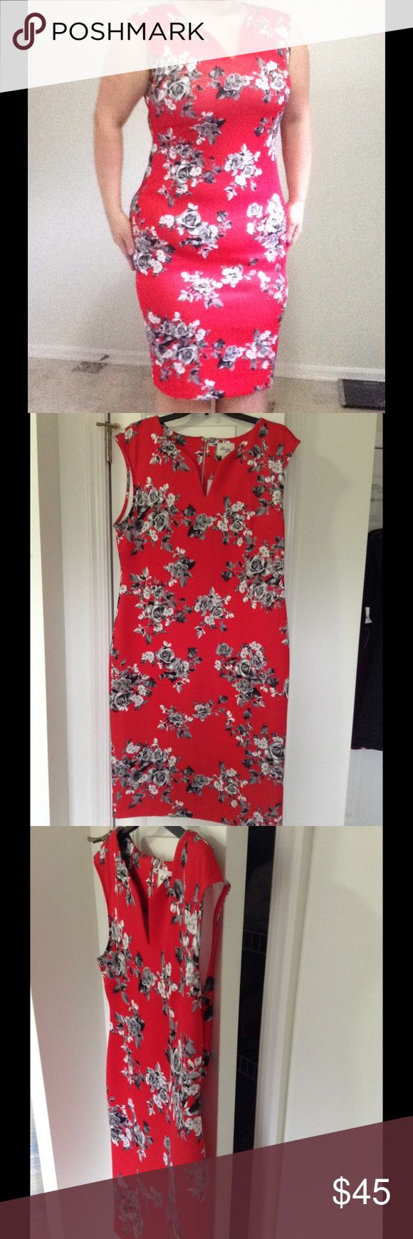 Asian Floral Bodycon Dress zippers almost all the way down back and small slit. Material stretches ECI Dresses
