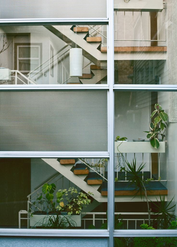 Modern home with stairs seen through glass walls lots of for Modern house plants
