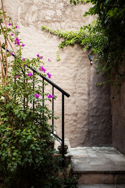 21 best Villa Mimine, Bali images on Pinterest | Bali, Landscape ... - garden design companies