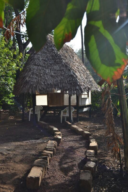 #KaribuHostel in #Moshi!  Welcome to #karibu Hostel, where all profits go to support an #NGO called #BorntoLearn. Karibu Hostel is located in a very secure area, only 5min walk from the city center of Moshi, #Tanzania. We offer #accommodation in shared six-bed #dorm rooms, where you can make close #friends or a twin-bed double room for those who want more #privacy.  #Backpacking #Hostels #Share #Africa #EastAfrica #Hosteling #Accommodation #fun #Exploring #Travel #AfricaTravel #Moshi…