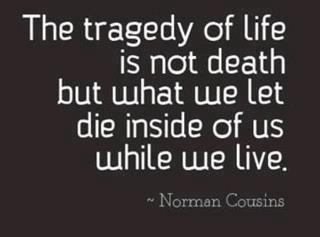 .: Life Quotes, Remember This, Sotrue, The Inside, Truths, Well Said, So True, Norman Cousins, True Stories