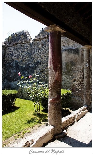 Pompeii- always been a love of mine
