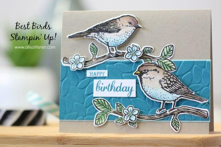 Stampin' Up! Best Birds Stamp Set and Framelit Bundle. 13 piece Photopolymer…