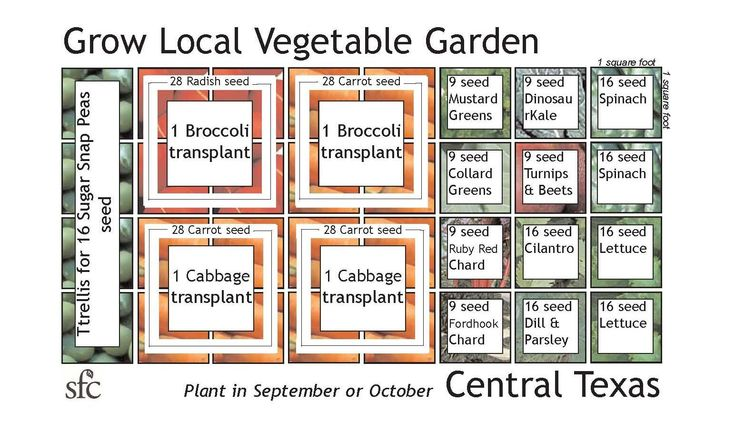 Pin by danette harris on gardening pinterest for Planning your garden layout