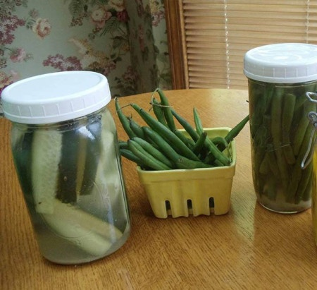 Cultured Pickles: These taste like Bubbies pickles!