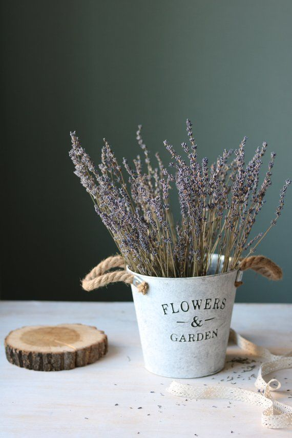 Dried Lavender Bouquet,200 Long Lavender Stems,Dried flowers