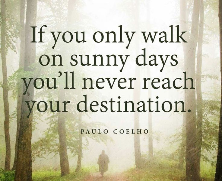 17 Best Cruise Quotes On Pinterest: 17 Best Sunny Day Quotes On Pinterest