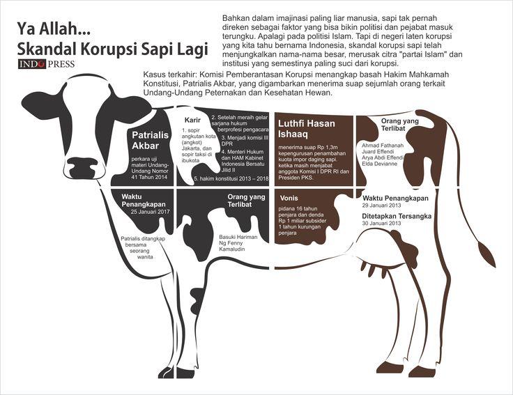 Infografis: Skandal Korupsi Sapi - IndoPress