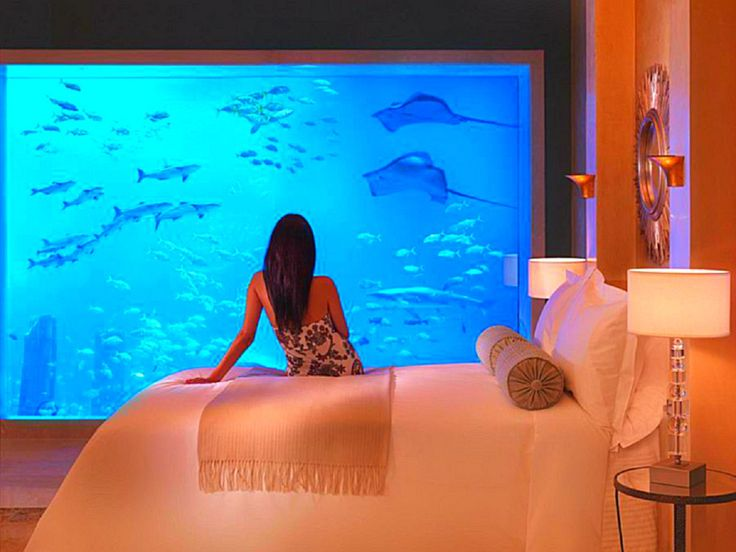 17 Best Images About Fish Tanks On Pinterest Rock