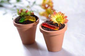 estos son macetas con una flor y se colo un gusanito....es un postresito sencillito...  primero compras en las tiendas para eso de ddesechable y todo eso unos vasos desechables de color cafesito claro como salmon..................despues pones chocolate en la maecta ...lo compras o ases tu muffin y despues compras unas gomitas de gusanos y despues ases o compras unas flores de azucar y ya!! facil y sencillo..siganme