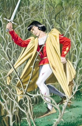Unsuccessful prince - Sleeping Beauty - Eric Winter - Ladybird Book