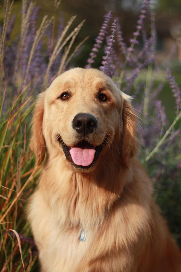 Happy.: Adorable
