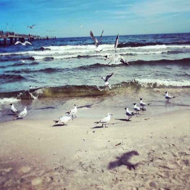 Plaża w Świnoujściu.