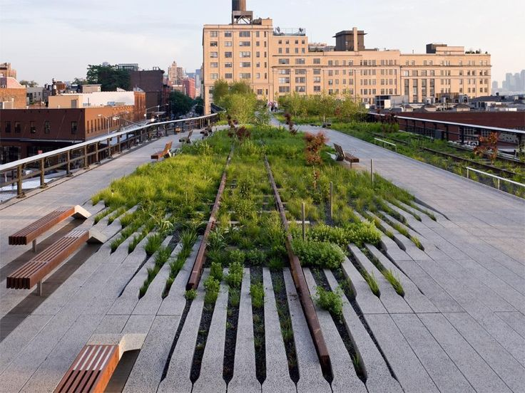 highline nyc. Piet Oudulf. A striking interpretation of Oudulf's vision.