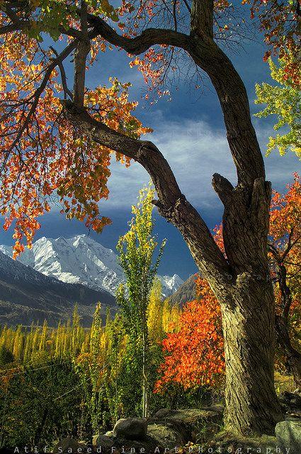 Mount Rakaposhi, Pakistan. Rakaposhi, is in the Karakoram mountain range. It is situated in the Nagar Valley approximately 100 km north of the city of Gilgit.