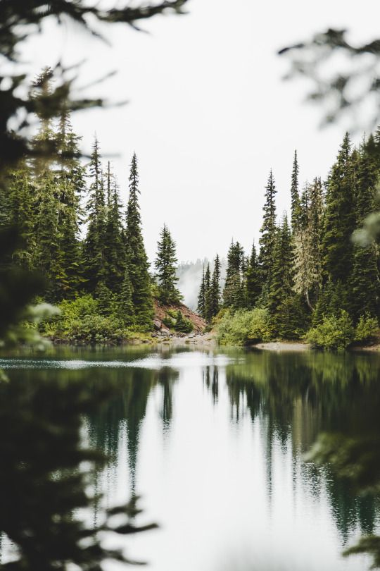 this would be my happy place, i love nature (the openess and freshness, it relaxes me, I like the smell and the colours) and for some reason i feel nostaligic to lakes surrounded by forests