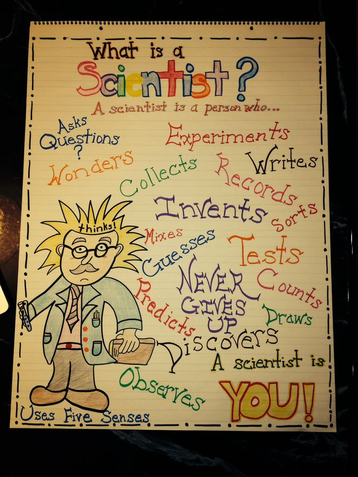 Scientist Anchor Chart