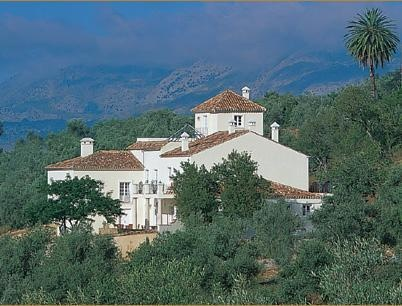 Hotel la Fuente de la Higuera, Ronda. Beautifully converted olive mill turned B We stayed here on our honeymoon...