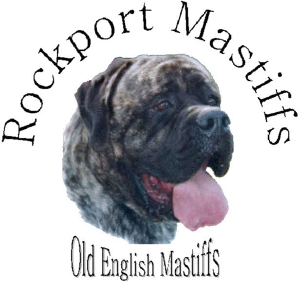 Rockport Mastiffs - Old English Mastiff Breeders
