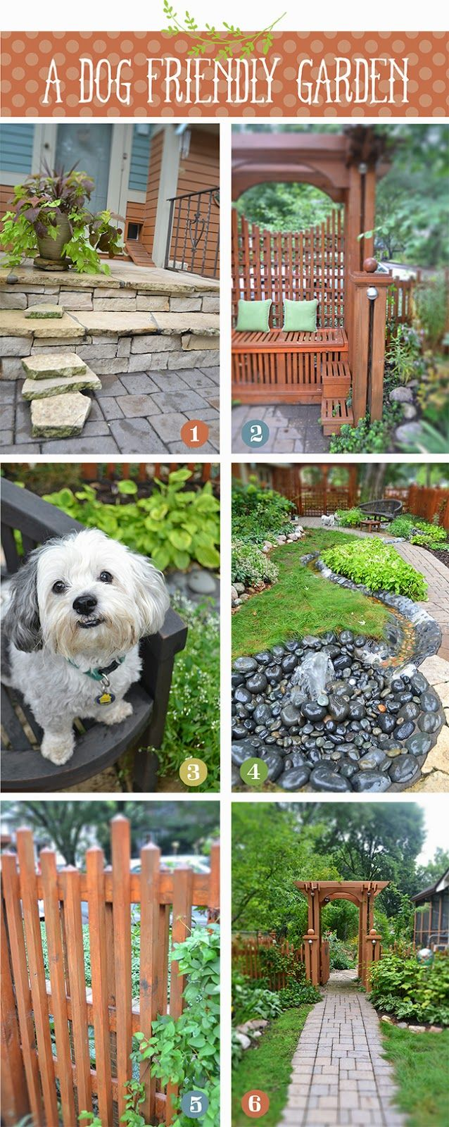 I don't own a dog, but this garden made me think it could be possible one day!  Lisa Orgler Design: A DOG FRIENDLY GARDEN