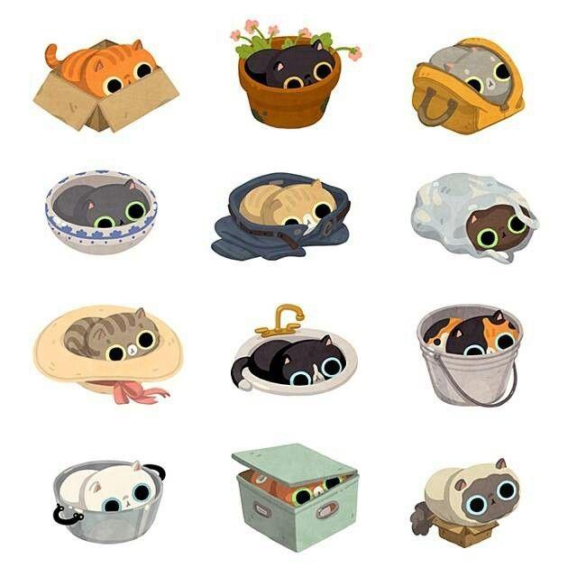 If it fits | Miisut - Kittycats | Pinterest | Cat