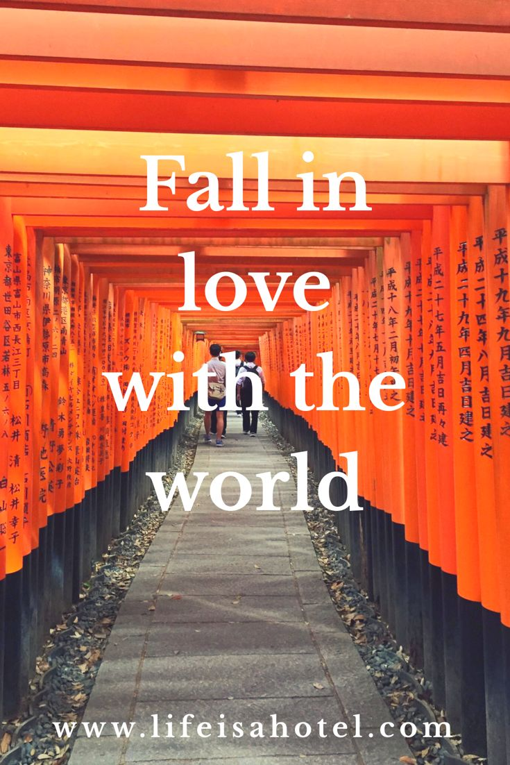 Fall in love with the world ❤