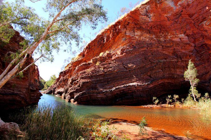 Dans le parc national de #Karijini, dans l'ouest de l'#Australie.