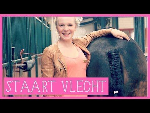 Staart vlechten   PaardenpraatTV - YouTube