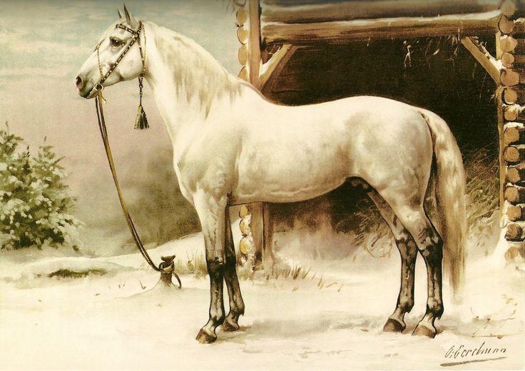 "art-nimals:  ""Otto Eerelman (1839 - 1926), Portrait of a Horse  """