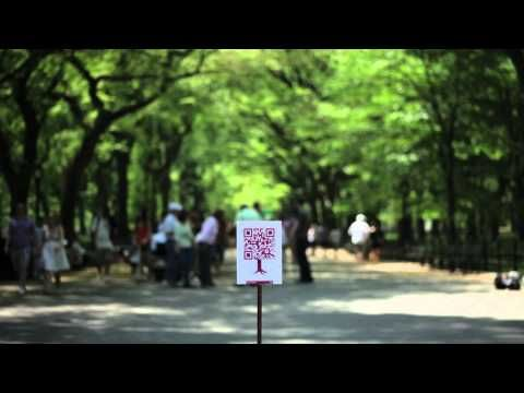 EXTEND YOUR CENTRAL PARK EXPERIENCE