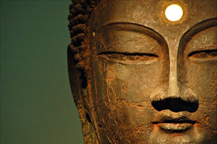 ♥8 Ancient Beliefs Now Backed By Modern Science♥ #HelpingOthers #Acupuncture #SupportofCommunity #TaiChi #Meditation #Compassion #Love http://www.huffingtonpost.com/2014/03/21/8-ancient-beliefs-now-bac_n_4995877.html?utm_hp_ref=mostpopular