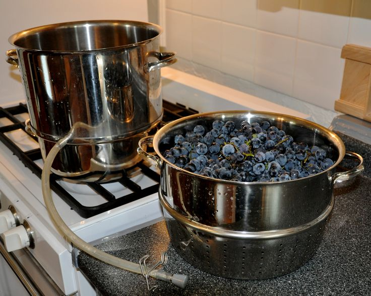 The easiest way to make juice for drinking or for jelly is with a steam juicer